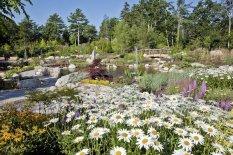 garden-of-five-senses-delhi