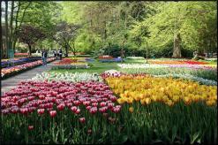 garden-of-five-senses_flowers