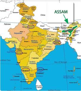 map-of-india-with-assam